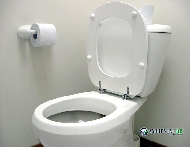vaso sanitário entupido